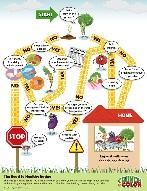 healthy alkaline body