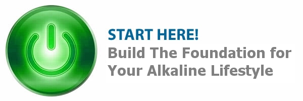 Getting Started: The Alkaline Program